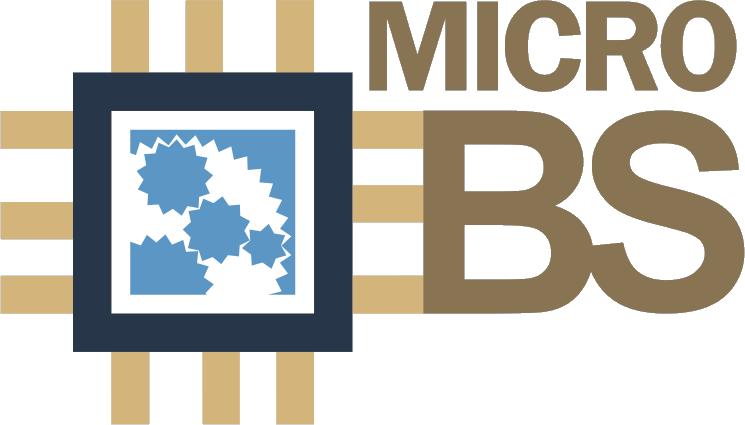 MicroEBS